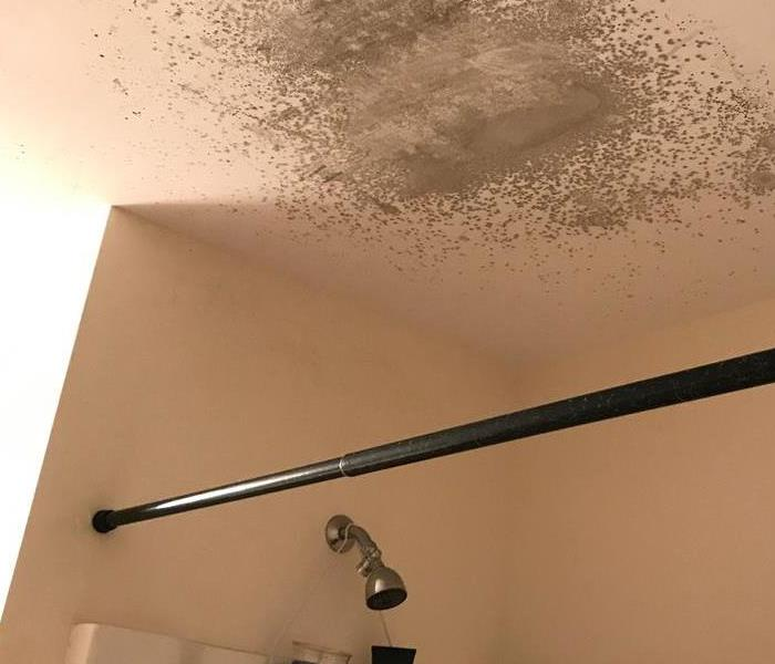 Mold in residential bathroom