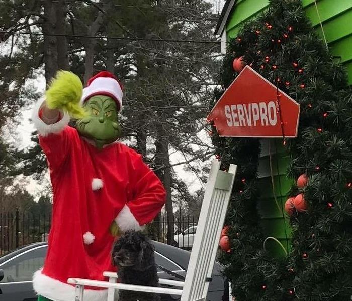 Dana dresses up as the Grinch