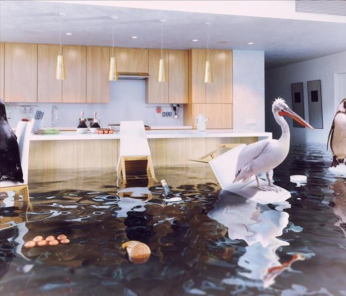 Image of a flooded kitchen