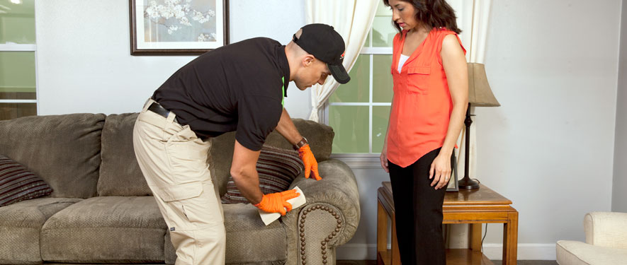 Washington, NC carpet upholstery cleaning