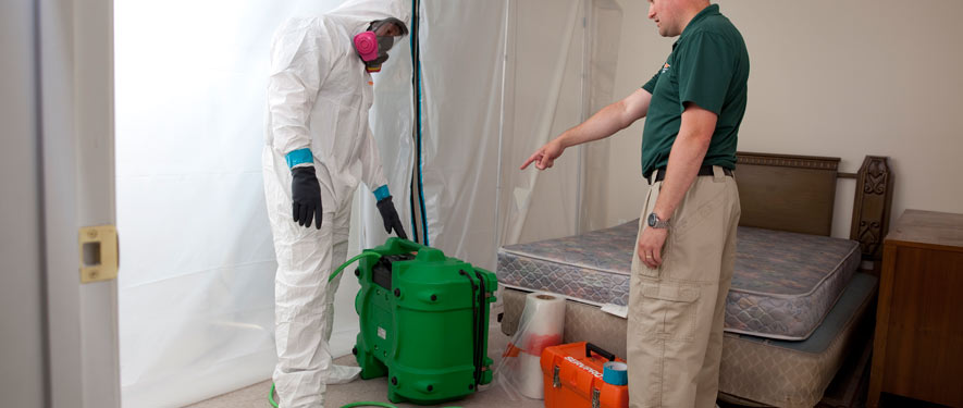 Washington, NC mold removal process